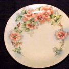 BEAUTIFUL HANDPAINTED GERMAN PLATE SIGNED, hp19
