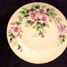 BEAUTIFUL HANDPAINTED GERMAN PLATE CIRCA 1902, hp16