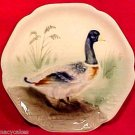 Antique Majolica Pottery Duck Plate Choisy-le-roi 1860-1910, fm588