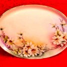 Antique Victorian Hand Painted T&V Limoges Dresser Tray Artist Signed c.1892-1907, L167