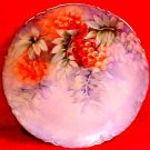 Antique Haviland Limoges Red Currants & Leaves Plate c.1883-1930, L169