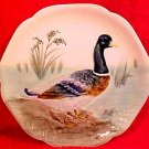 Antique Majolica Duck Plate Choisy-le-roi France c.1860-1910, fm594