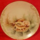 Grgeous Handpainted German Bohemia Porcelain Sea Shell Plate c.1920, p145