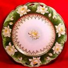 Antique Austrian Fine Porcelain Water Lilies, Lily Platter c.1884-1909, pc32