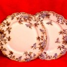 Lovely Pair of Antique Limoges Flowers Plates c.1881, L128