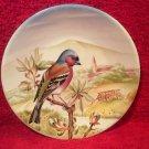 Beautiful Vintage French Sarreguemines Faience Chickadee Bird Plate, ff380