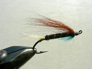 Salmon Fly f8