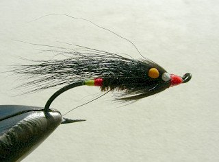 Salmon Fly f13