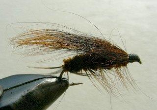 Rainbow Trout Streamer f35