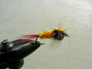 Rainbow Trout Streamer f37