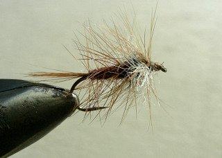 Dry Flies & Wulfs f69