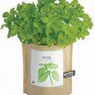 Basil Garden in a Bag
