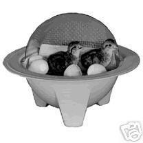 2 REPLACEMENT BULBS  for Chick-Bator Mini- Incubators