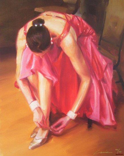 CARRIE GRABER THINK PINK dress HS# CANVAS ballerina COA