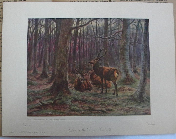 Deer In Forest, Bonheur 1925 Picture Study Series No. 3 Vintage Print