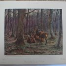 Deer In Forest, Bonheur 1925 Picture Study Series No. 3 Vintage Print