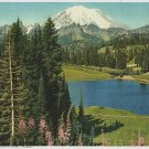 Vintage Print Radiant Mt. Rainier 8x10 Mountains, Wildflowers