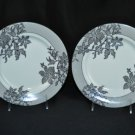 RALPH LAUREN China Cocktail Dress Salad Plates Set of 2 New