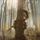Where the Wild Things Are Version B Original Movie Poster 27 X40 Double Sided