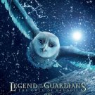 Legend of the Guardians : The Owls of Ga'Hoole Advance  Original Movie Poster  Double Sided 27 X40