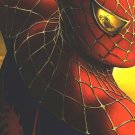 Spider-Man 2 Advance Original Movie Poster Single Sided 27 X40