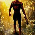 Spider-Man 2  Choice Spanish Original Movie Poster Double Sided 27 X40