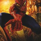 Spider-Man 2  Destiny International Original Movie Poster Double Sided 27 X40