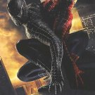 Spider-Man 3 Advance Version C Original Movie Poster Double Sided 27X40