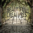 Beautiful Creatures Advance 2013 Original Movie Poster Double Sided 27 X40
