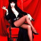 Elvira Mistress of the Dark Cassandra Peterson  Style F Poster Style E 13x19