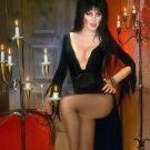 Elvira Mistress of the Dark Cassandra Peterson  Style I Poster Style E 13x19