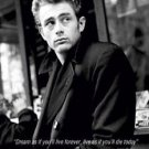 James Dean Photo Version c  Poster  13x19
