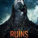 Ruins Regular Double Sided Original Movie Poster 27x40 inches