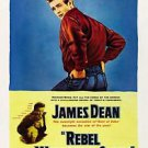 Rebel Without A Cause Movie Style E Poster 13x19 inches