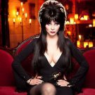 Elvira Mistress of the Dark Cassandra Peterson  Style K Poster Style E 13x19