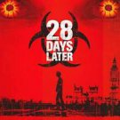 28 Days Later Dvd 27x40 inches Original Movie Poster Single Sided
