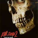 Evil 2 Dead by Dawn Movie Poster 13x19 inches