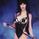 Elvira Mistress of the Dark Cassandra Peterson Poster Style J 13x19