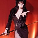 Elvira Mistress of the Dark Cassandra Peterson Poster Style F 13x19