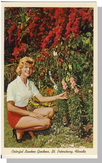 ST. PETERSBURGH, FLORIDA/FL POSTCARD, Sunken Garden