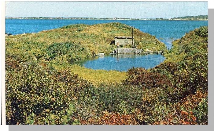 MARTHA'S VINEYARD MASS/MA POSTCARD, Menemsha Pond/Cape Cod