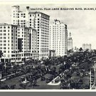 MIAMI, FLORIDA/FL POSTCARD, Biscayne Blvd/Palm Trees