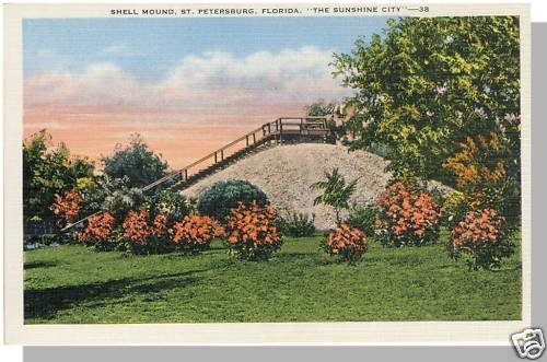 Unusual ST PETERSBURG, FLORIDA/FL POSTCARD, Shell Mound