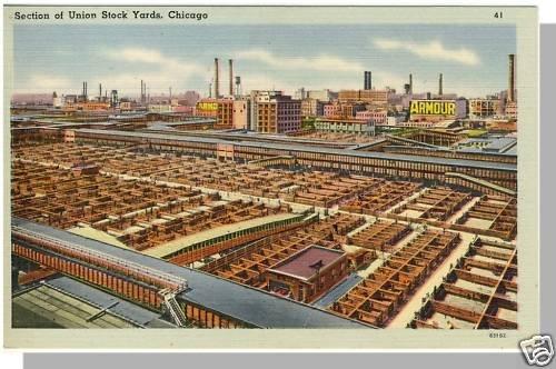 Nice CHICAGO, ILLINOIS/IL POSTCARD, Union Stock Yards