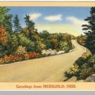 Beautiful MERIGOLD, MISSISSIPPI/MS POSTCARD, 1968!