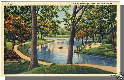PORTLAND, MAINE/ME POSTCARD, View At Deerings Oaks