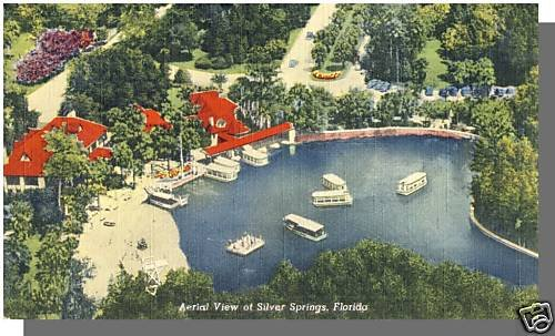 SILVER SPRINGS, FLORIDA/FLPOSTCARD, Aerial View, 1950