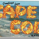 CAPE COD, MASS/MA POSTCARD, Greetings/Cod Fish/Surf