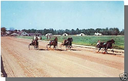 SOUTHERN PINES, N. CAROLINA/NCPOSTCARD, Harness Racing