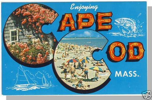 ENJOYING CAPE COD, MASS/MA POSTCARD, Beach/Boats/Roses